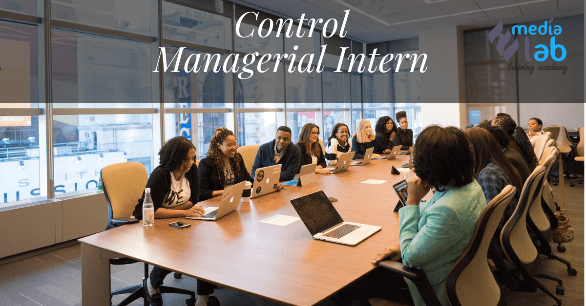 Curs Control Managerial Intern